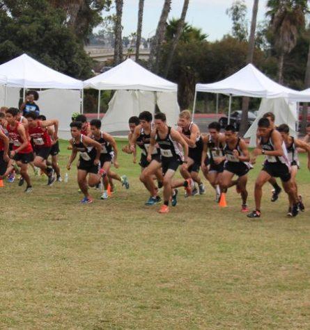 Men's cross country team qualifies for regionals