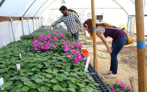 Seeds @ City strives to receive $15,000 grant