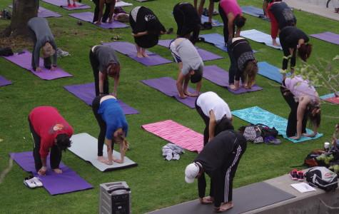 Step Up to Live Well promotes campus fitness through yoga