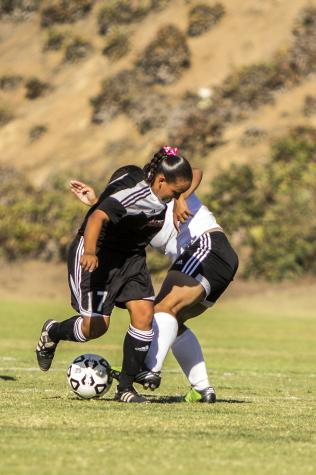 A slow start for Knights soccer teams