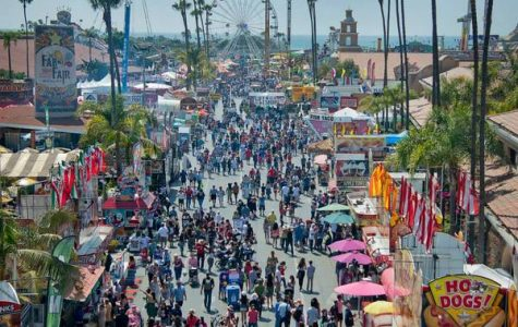 Smart tips to save money at the fair