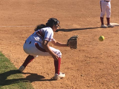 Palomar pummels Knights in softball