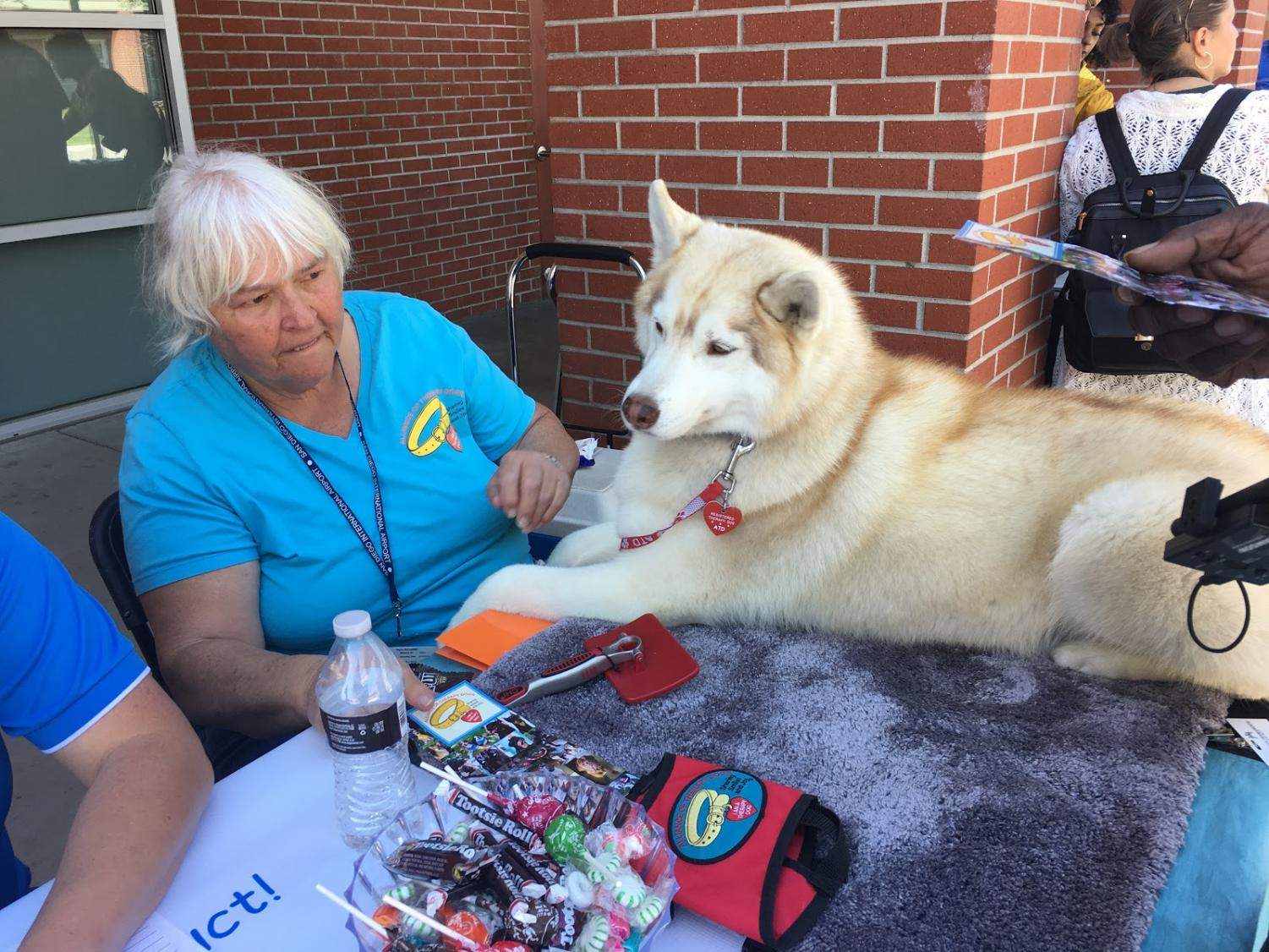 Pet therapy was encouraged by Best of Care at the Health and Wellness Expo at City College. By Uyen Pham/City Times
