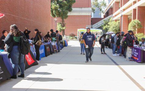 City College students prepare for transfer